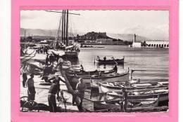 ANTIBES (06) / CPSM / Le Port Et Les Pêcheurs / Au Fon: Le Fort Carré / Animation - Autres