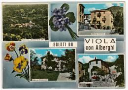 SALUTI DA VIOLA Con ALBERGHI - CUNEO - 1969 - Cuneo