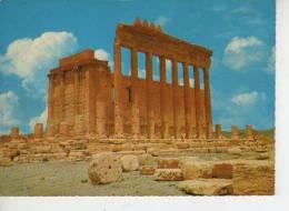 TEMPLE DE BELL, PALMYRE  SYRIE  OHL - Syrië
