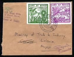 Spectacular Land Of Muggy Stamps On Letter 1994. - Cinderellas