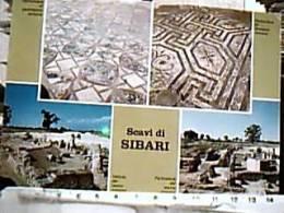 SIBARI PIANA PARCO CAVALLO TERRANOVA COSENZA SCAVI SIBARITIDE VEDUTE N1975  EE13590 - Cosenza