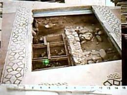 SIBARI PIANA PARCO CAVALLO TERRANOVA COSENZA SCAVI SIBARITIDE MOSAICO ROMANO E SCAVO  N1975  EE13591 - Cosenza