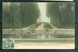 Versailles -   Le Bassin Des Dragons Et L'allée Des Marmousets     - Bch60 - Versailles (Château)