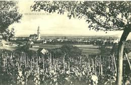 Herzogenburg. Vue Generale Deouis Le Vignoble. - Herzogenburg