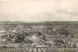 Réf : D-13-280 : Castillon Sur Dordogne - France