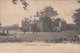 Westerlo Westerloo      Le Château               Scan 3964 - Westerlo