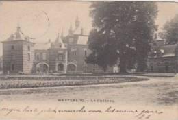 Westerlo Westerloo  Le Château               Scan 3991 - Westerlo
