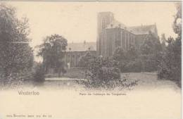 Westerlo Westerloo  Parc De L' Abbaye De Tongerlo          Scan 3994 - Westerlo