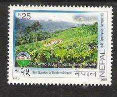 NEPAL 2003   Tea Gardens Of  Eastern Nepal, Agriculural Industry, 1 Value MNH(**) - Landwirtschaft