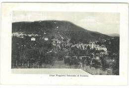 CARTOLINA - LAGO MAGGIORE - PANORAMA DI PREMENO - CUSIO OSSOLA   - VIAGGIATA NEL 1911 - Verbania
