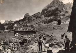 -CPSM - 74 -Chaine Des ARAVIS - Un Chalet De Montagne - 036 - France