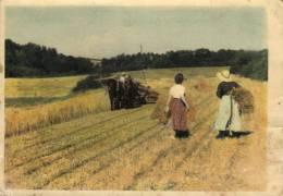 65378 - Agriculture     Travail Dans Les Champs - Teams