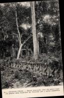 CAMBODGE _ ANGKOR THOM _ ENTREE PRINCIPALE - Cambodge