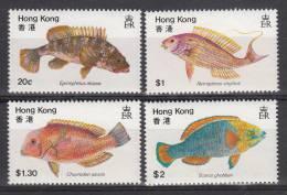 Hong Kong MNH Scott #369-#372 Set Of 4 Fish - Nuevos