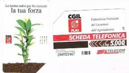 TELECOM ITALIA - C.& C. 2917  - CGIL FLAI    - USATA - Italia