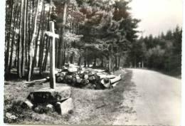 42* LA VERSANNE CPSM (10x15cm) La Croix Des Chasseurs - France