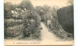 45* DARVOY Les Marronniers - France