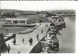 105-115 - PORT-LA-NOUVELLE - LA RESERVE ( Animées ) - Port La Nouvelle