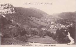 CPA 39  SALINS-LES-BAINS ,la Vallée De Pretin. - France