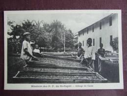 MISSIONS DES P.P DU SAINT ESPRIT / SECHAGE DU CACAO / TRES BELLE CARTE ANIMEE / PHOTOTYPIE BIENAIME - Missions