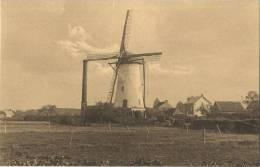 Ekeren :  De Verdwenen Windmolen Van 't Hagelkruis     (  HOELEN ) - Belgique