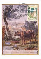 D11597 CARTE MAXIMUM CARD 1995 FRANCE - FABLE - FROG AND COW BY FONTAINE CP ORIGINAL - Frogs