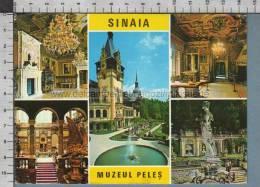 S1089 ROMANIA SINAIA MUZEUL PELES - Romania