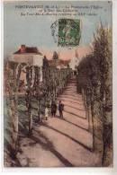 49 FONTEVRAULT ( M Et L ) - La Promenade , L'Eglise Et La Tour Ste Catherine - Animéhommes Et Fille Dans L'allée - Sin Clasificación
