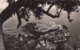 1959 MONTE-CARLO - LE ROCHER - Monaco
