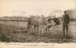 Dép 64 - Agriculture - Attelage De Boeufs - G893 - Pays Basque  - Le Labourage - état - France