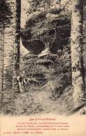 VALLEE DE CELLES LUVIGNY RAON SUR PLAINE ROCHE DU TRUPT DECOUVERTE LE 1ER JUIN 1903 - Non Classés
