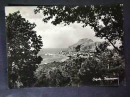 SICILIA -PALERMO -CEFALU' -F.G. LOTTO N°264 - Palermo