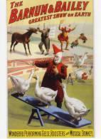 CPM - Cirque - Barnum & Bailey Greatest Show On Earth - Clowns - Oies - Ane - Coqs - Cirque