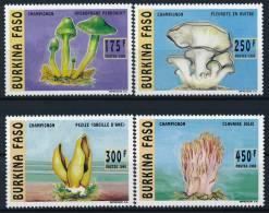 Burkina Faso Mushrooms Pilze Set (4) °BM0123 MNH - Pilze