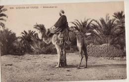 Algerie Colomb Bechar Scenes Et Types Méharistes Chameau - Algérie