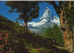 MATTERHORN  OHL - Suisse