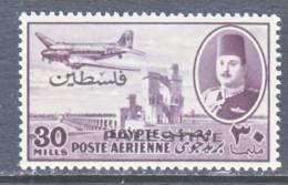 Egypt For Palestine  NC 8    * - Palestine