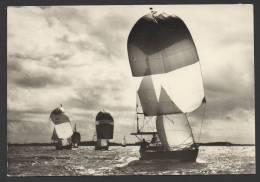 """DF / TRANSPORTS / BATEAUX / VOILIERS / """" EN REGATES SOUS SPI """"  PHOTO DE ERWAN QUEMERE - Sailing Vessels"""
