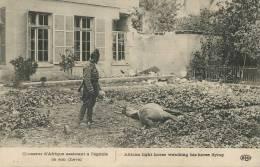 Chaseur Afrique Assistant A L Agonie De Son Cheval ELD - Oorlog 1914-18