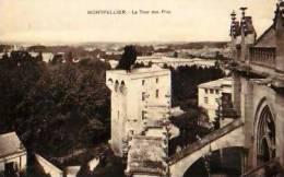 Montpellier   190        La Tour Des Pins   . - Montpellier