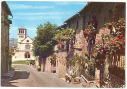 Italy, ASSISI, Basilica Di S. Francesco, Chiesa Superiore, 1977 Used Postcard [13809] - Perugia