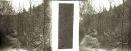 Plaque Stereo La Hoegne  à Sart Et Hacquai - Plaques De Verre