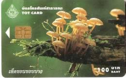 TARJETA DE TAILANDIA DE UNA SETA (MUSHROOM) - Télécartes