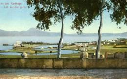 Carthage Les Anciens Ports 520 Lehnert & Landrock Photogr Tunis 8463 Colorisée Arbres - Tunisia