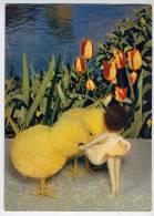 La Cité Du Bonheur---Jeannette Et Ses Poussins (fleurs,tulipes),cpm N°3  éd Yvon - Séries TV