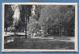 BELGIQUE - MOUSCRON -- Parc - Mouscron - Moeskroen