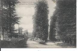 SASSETOT LE MAUCONDUIT - La Route Des Petites-Dalles - Non Classés