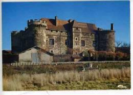 Saint Saturnin : Chateau De La Tour D´Auvergne  N° 3 0351 - France
