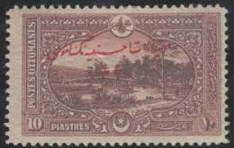 TURQUIA 1914 - Yvert #206 - MLH * - Nuevos