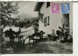 PAYS BASQUE -  La COUR De La FERME -  Attelage De Boeufs  - - France